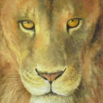 Aslan's gaze by James Martin