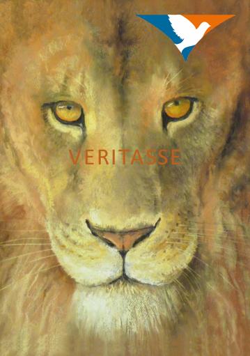 Aslan's gaze by James Martin