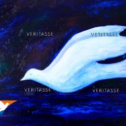 Genesis by Sue Newham