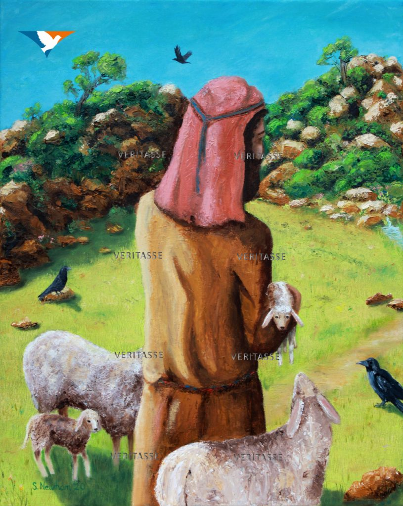 He tends his sheep by Sue Newham