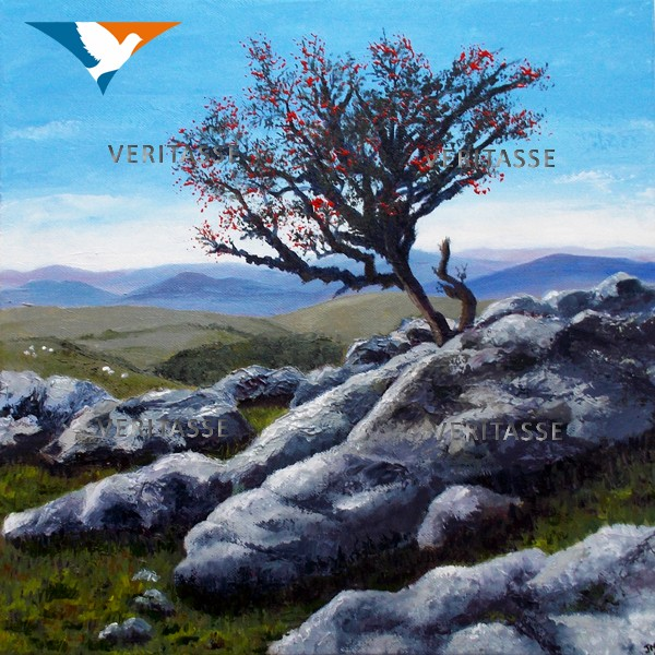 Rooted in the rock by Jean Mintoft